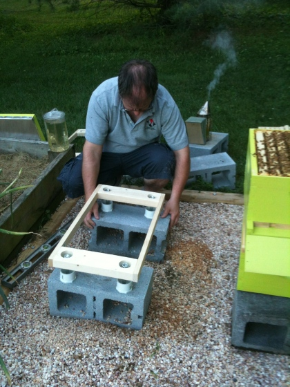Hubster repositions and levels GH1 base and adds ant deterring frame.