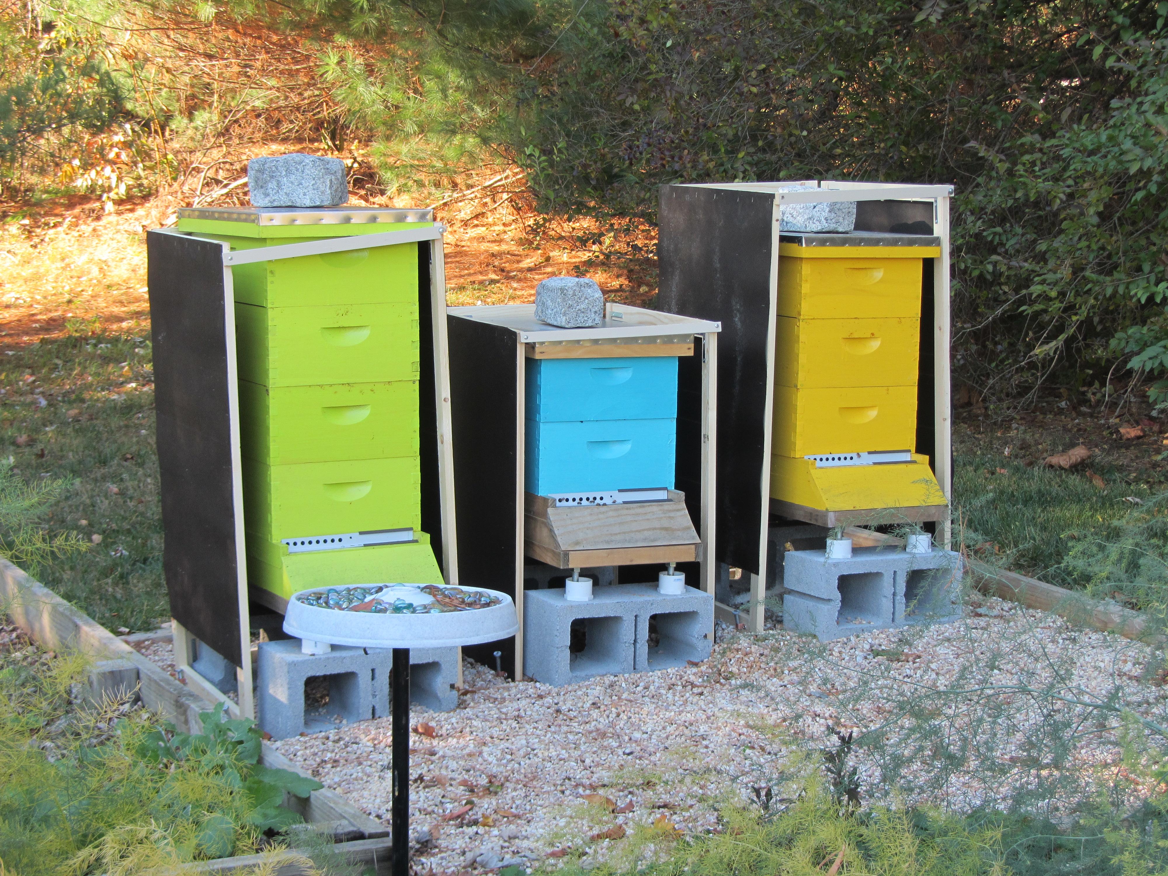 Home Built Hive Windbreakers Boo Bee Honey