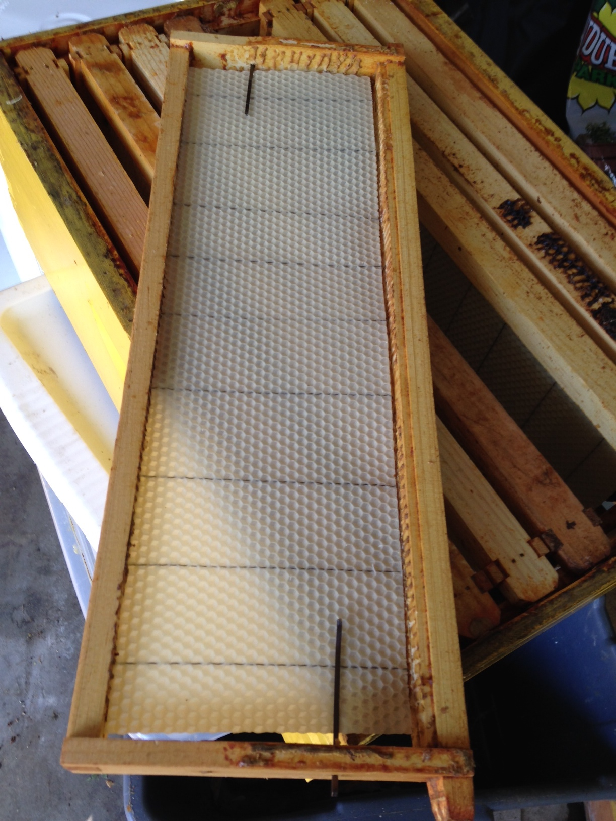 Bee Boo Bee Honey
